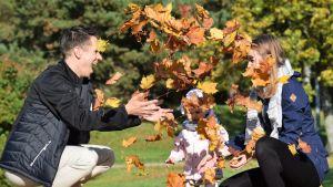 Tommi Aro, tyttärensä ja vaimonsa kanssa heittelemässä vaahteranlehtiä