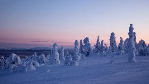 Pyhä-Luoston kansallispuisto kaivos