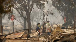 Tulipalossa tuhoutunutta asuinaluetta Santa Rosassa.