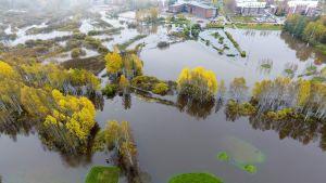 Tulvavesi noussut Espoon Kirkkojärvellä aikaisin torstaina aamulla 12. lokakuuta