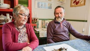 Ella ja Veijo Kanninen ovat kalastaneet verkoilla yli 50 vuotta, mutta tälläistä saalista ei ole ennen kohdalle osunut