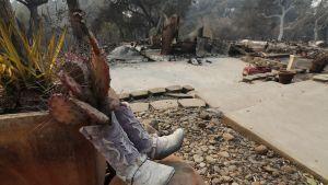 cowboy-saappaissa kasvaa kaktuksia, taustalla tulipalossa tuhoutunut talo.