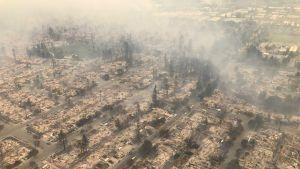Kalifornian maastopalojen tuhoja Santa Rosassa.