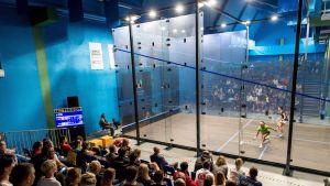Squash, yleiskuvaa