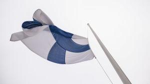 Suomen lippu liehuu.