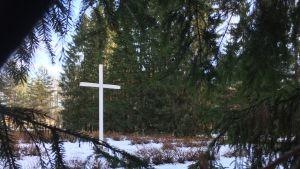 Valkoinen risti on Törnävän sairaalan eli entisen Seinäjoen piirisairaalan hautausmaan keskellä.