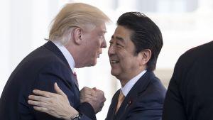 Trump ja Abe tervehtivät toisiaan lähes halaten.