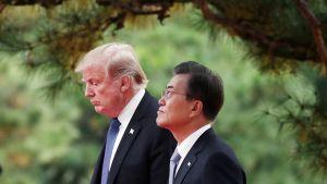Donald Trump ja Moon Jae-in