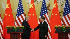 Yhdysvaltain presidentti Donald Trump ja Kiinan presidentti Xi Jin-ping puristavat kättä