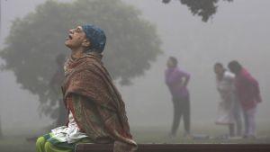 Naiset joogaavat puistossa New Delhissä