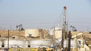 Öljynporaus, öljykenttä.