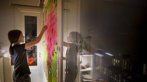 Edith Roselius teippaa post it -lappuja ikkunaan