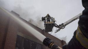 Palomiehet sammuttavat tulipaloa tehtaalla.