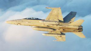 Hornet F-18.