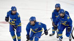 Ruotsin jääkiekkomaajoukkueen pelaajia