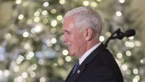 Valkohiuksinen Pence seisoo hymyillen jouluvalojen edessä. Hänellä on yllään tumma puku, vaalea kauluspaita ja sininen raidakas kravatti. Puvuntakin kauluksessa on Yhdysvaltain lippua esittävä pinssi.