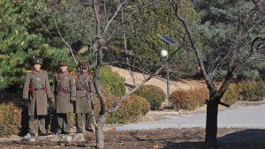 Pohjoiskorealaiset sotilaat partioivat demilitarisoidun vyöhykkeen rajalla