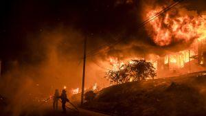 Tilastohistorian laajimmaksi kuvailtu maastopalo alkoi Etelä-Kaliforniassa 4. joulukuuta 2017. Kuvassa palomiehiä ja palava rakennus.