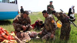 Kurdien peshmergasotilaat auttavat Isisin vankeudesta vapautettua jesidimiestä Kirkukin lähellä huhtikuussa 2015.