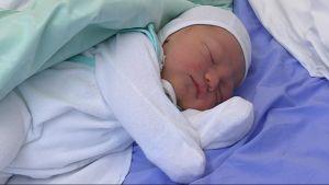 Nyfödd på Lojo bb