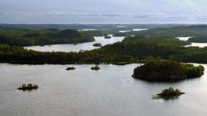 Tarinoita järviltä