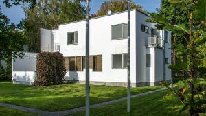 Alvar Aallon Villa Tammekannin tarina