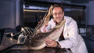 Prisma: Krokotiilit vastaan käärmeet