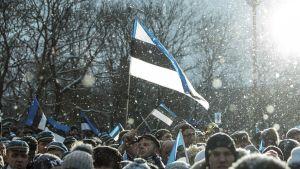 Viron tie itsenäisyyteen