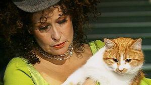 Myllyrenki ja kissa