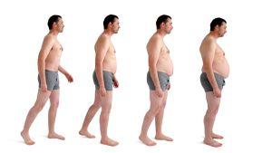 Läskikerros on aktiivinen hormonien, ruokahalun ja aineenvaihdunnan säätäjä