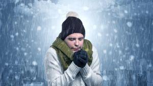 Eläimet ovat sopeutuneet tehokkaasti kylmään - tropiikista lähtenyt ihminen on kylmässä Pohjolassa lainahöyhenissä