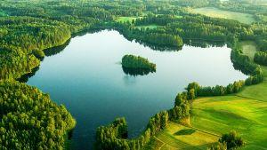 Suomen Murhamysteerit