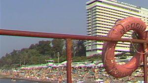 Ajankohtainen kakkonen (1981)
