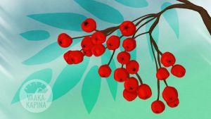 Vaakakapina - kapinatarinoita: Massa on voimaa, kun Elina puskee ja taklaa