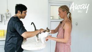 Katin kissalla on tappava virus