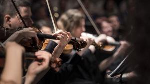 Suuret orkesterit
