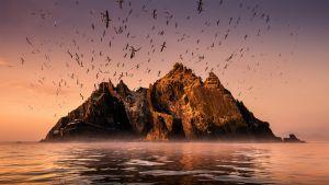 Avara luonto: Irlanti, maailman reunalla