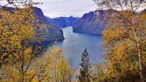 Avara luonto: Elämää Norjan vuonoissa