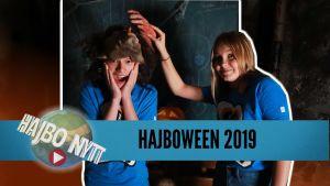 Pumporna hamnar på soptippen och britterna pustar ut men vad är egentligen Halloween?