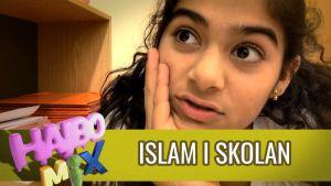 Nevroz har islam i skolan