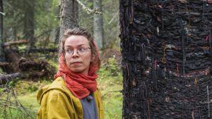 Kultur och urskog i Hyrynsalmi