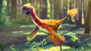 Prisma: Evoluution ihmeet