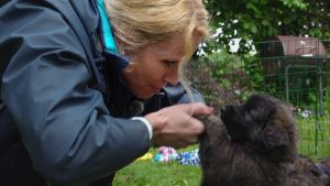 Elämäni eläimet: Eläinsairaalassa