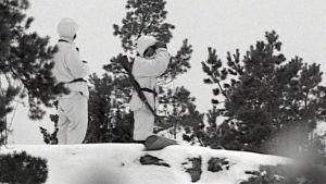 Talvisota - ensimmäinen torjuntavoitto