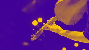 Radion sinfoniaorkesterin kauden avajaistilaisuus