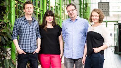 Ebenholts band