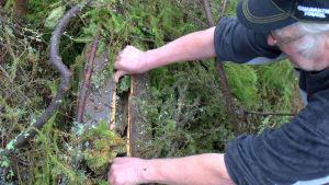 Rainer Ilkka visar upp bomaterialet inne i den holk han har hittat.