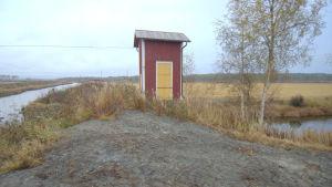 Fotografiet taget på odlingsvallen som skiljer de låga odlingsmarkerna till höger från utloppsån till vänster.