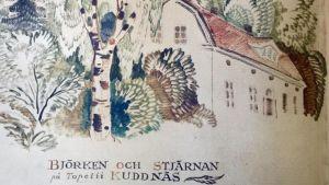 Illustration till Topelius saga Björken och stjärnan.