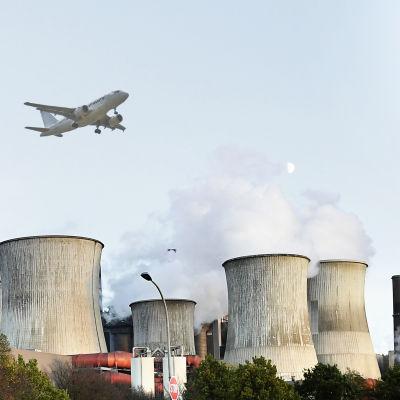 En ko i förgrunden och fabrik och flygplan i bakgrunden